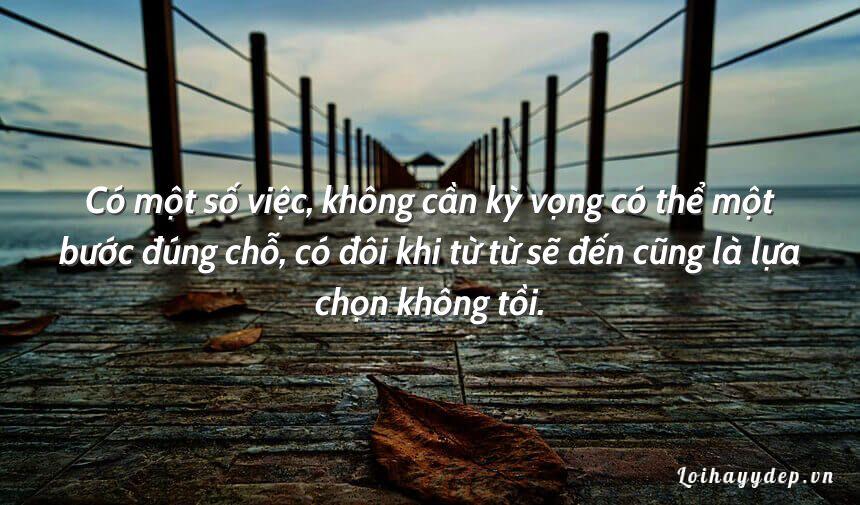 Có một số việc, không cần kỳ vọng có thể một bước đúng chỗ, có đôi khi từ từ sẽ đến cũng là lựa chọn không tồi.