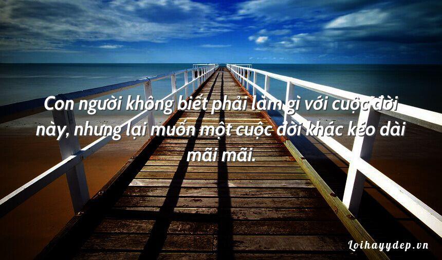 Con người không biết phải làm gì với cuộc đời này, nhưng lại muốn một cuộc đời khác kéo dài mãi mãi.