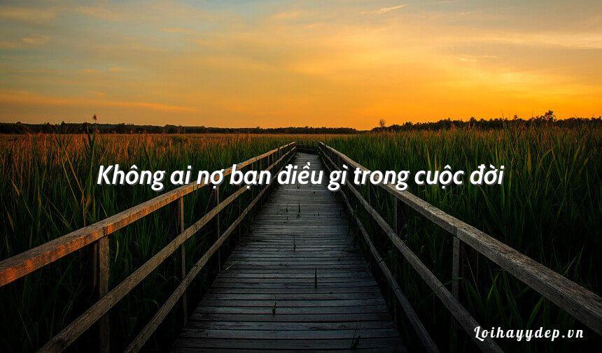 Không ai nợ bạn điều gì trong cuộc đời