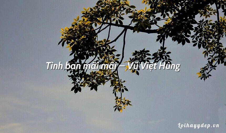 Tình bạn mãi mãi – Vũ Việt Hùng